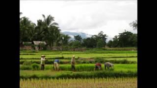 Thailand, Cambodia, Laos & Vietnam (Arts & Humanities)